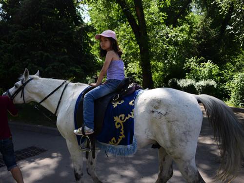Kazakhstan Almaty Panfilov Park Horse Ride