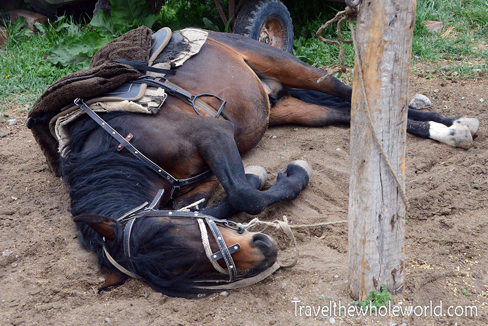 Kyrgyzstan Horseback Riding Sleeping