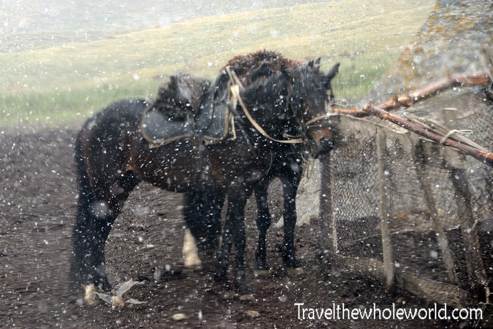Kyrgyzstan Horseback Riding Snowstorm