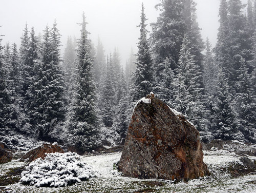 Kyrgyzstan Tian Shan Snow