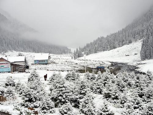 Kyrgyzstan Tian Shan Valley Snow