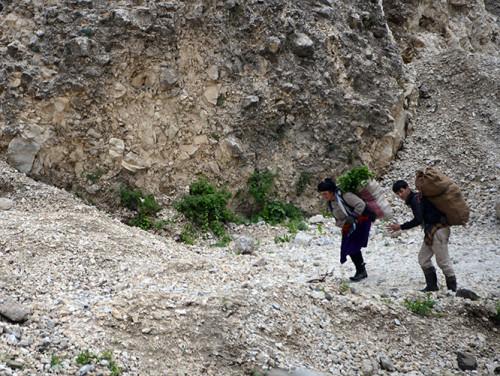 Tajikistan Highway Plants Picking
