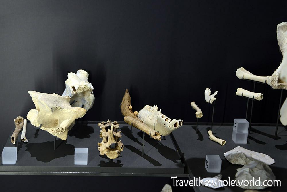England Stonehenge Museum Artifacts