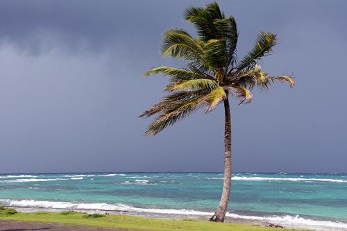 Nicaragua Caribbean