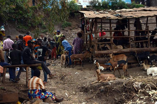 Congo Bukavu Market
