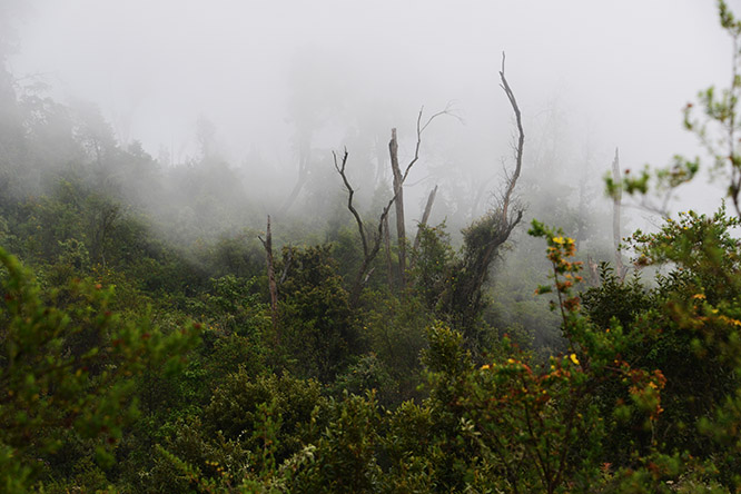 Congo Nyiragongo Volcano Clouds