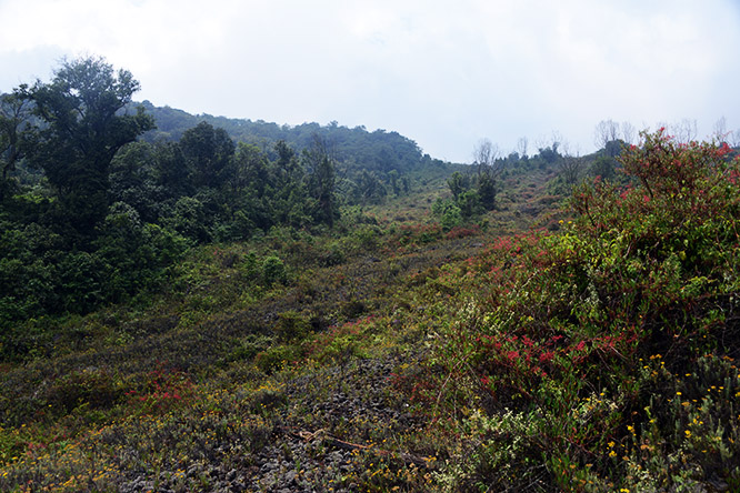 Congo Nyiragongo Volcano Lava Slide