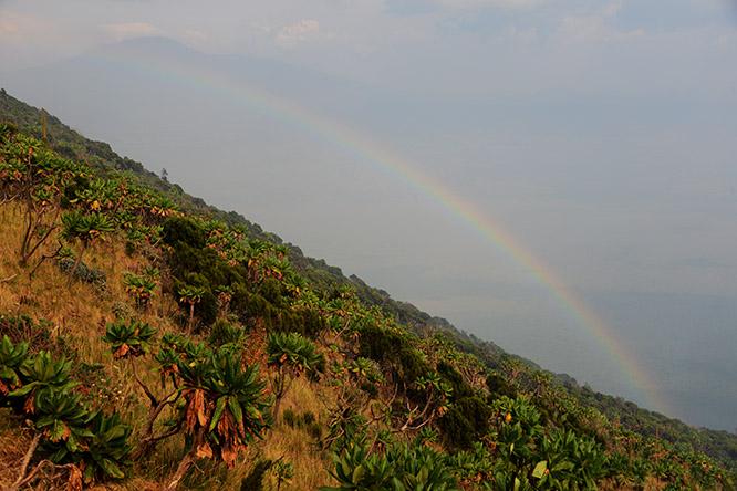 Congo Nyiragongo Volcano Rainbow