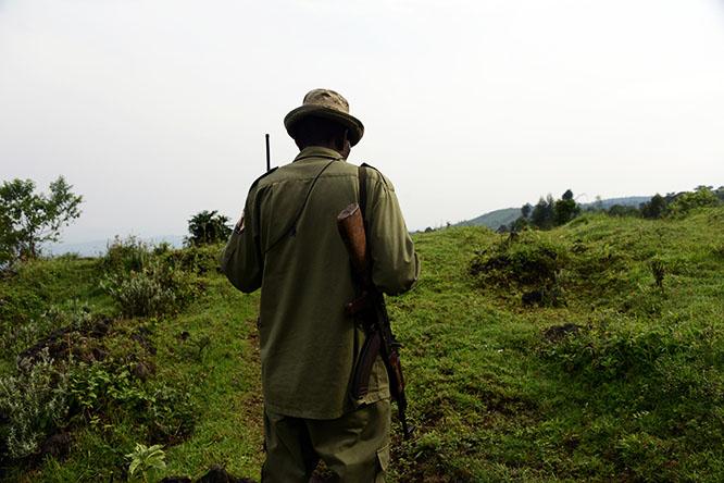 Congo Virunga Ranger