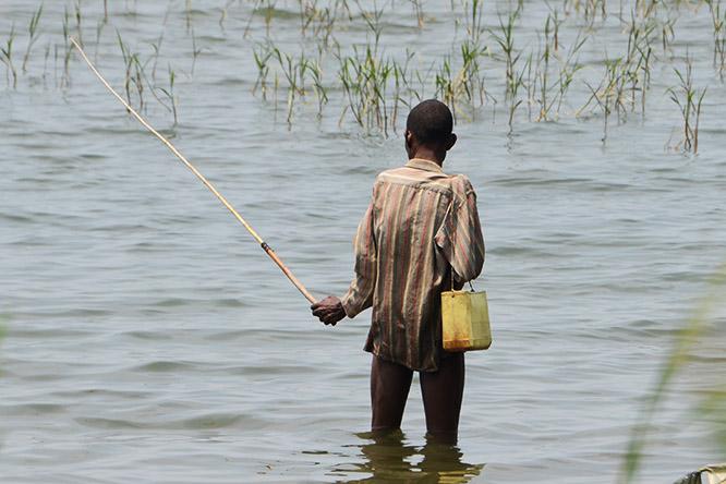 Burundi Bujumbura Lake Tanganyika Fishing