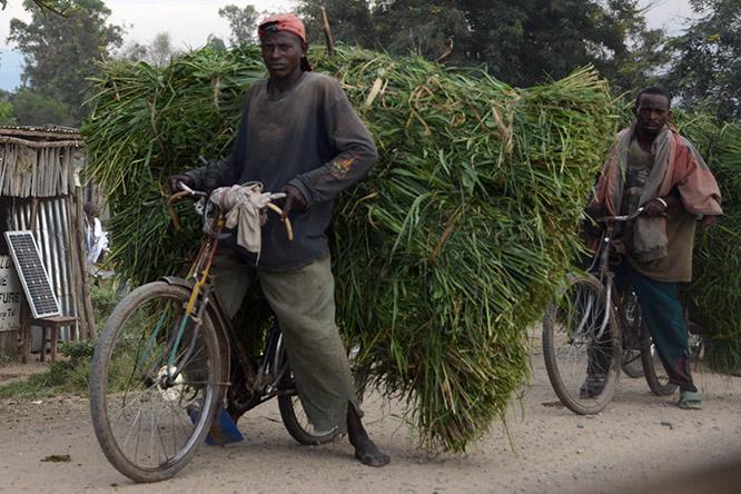 Burundi Bujumbura Transport