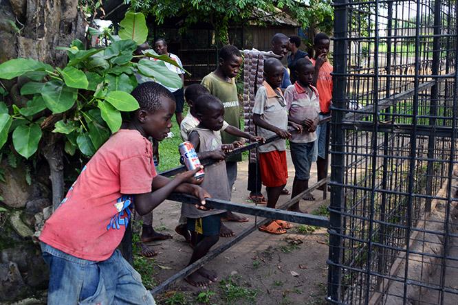 Burundi Bujumbura Zoo Kids