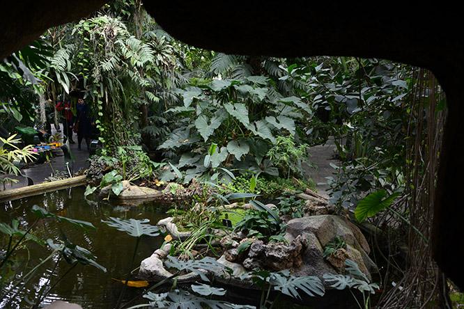 France Paris Botanical Gardens Cave