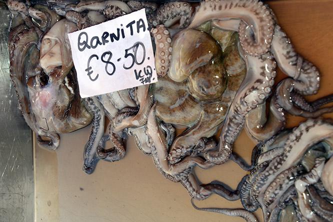 Malta Marsaxlokk Octopus