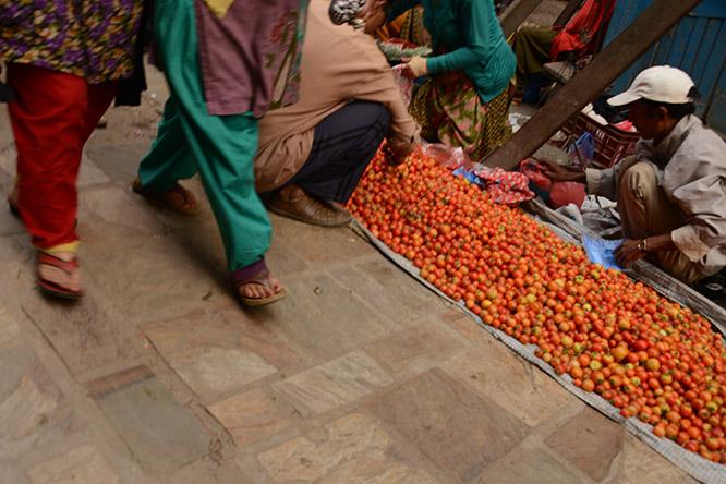 Nepal Kathmandu Tomatoes