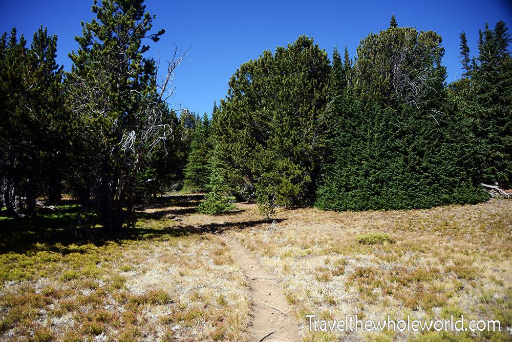 Montana Beartooth Wilderness Trail