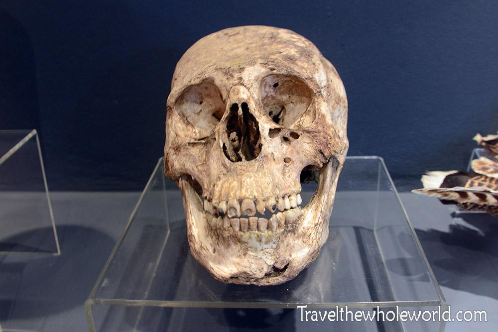 El Salvador San Andrés Skull