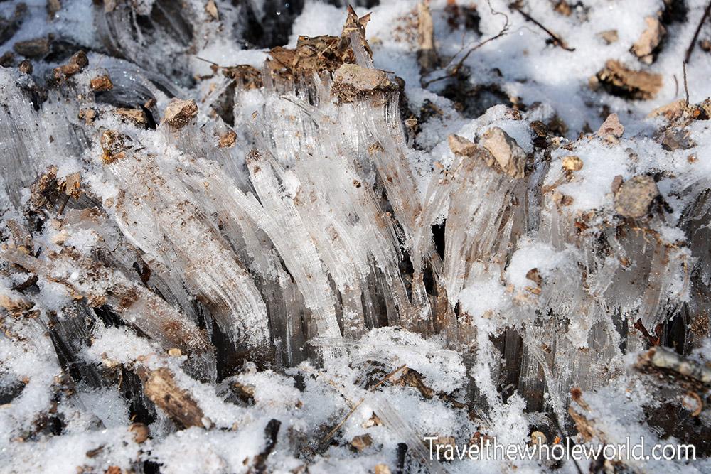 Virginia Mt. Rogers Ice Crystals