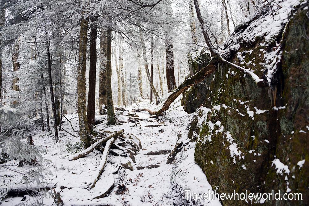 Virginia Mt. Rogers Winter
