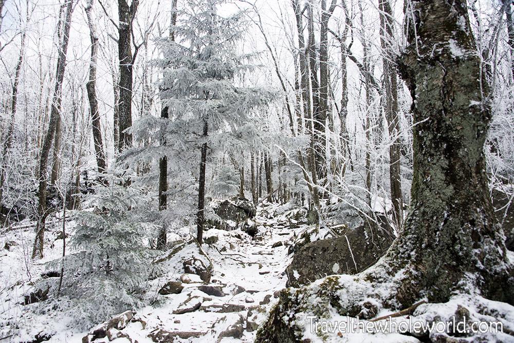 Mt. Rogers Applachian Trail Winter