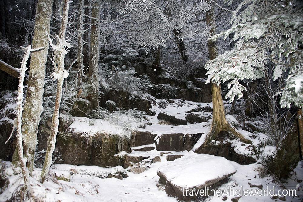 Virginia Mt. Rogers Summit Trail Winter