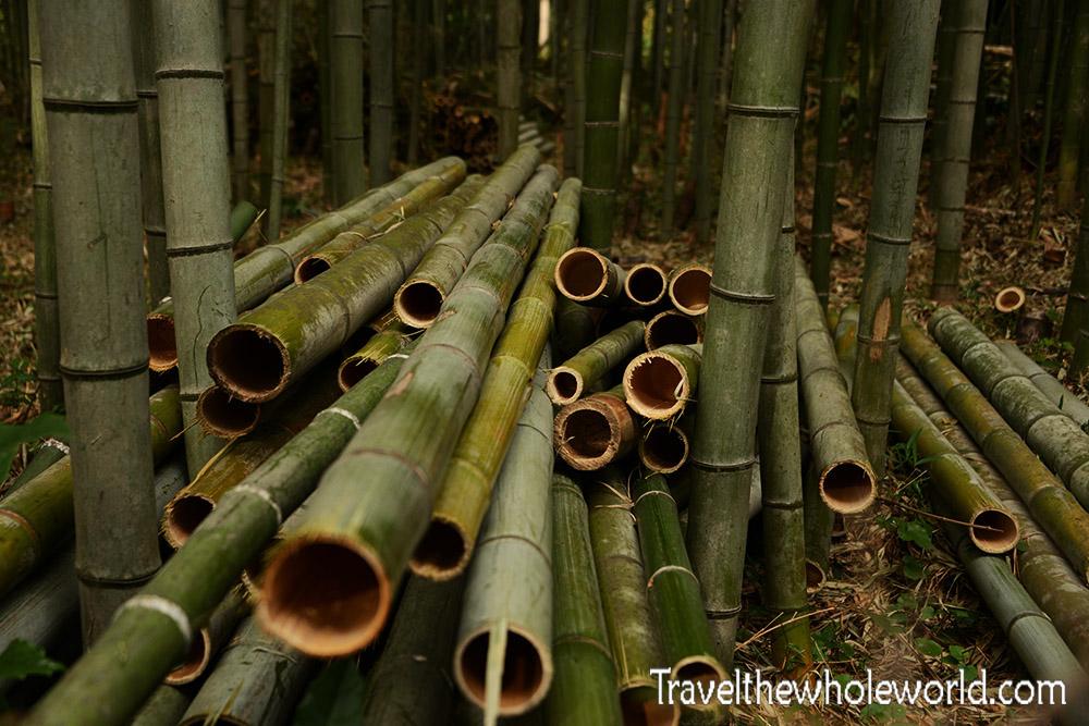 Arashiyama Bamboo Pile