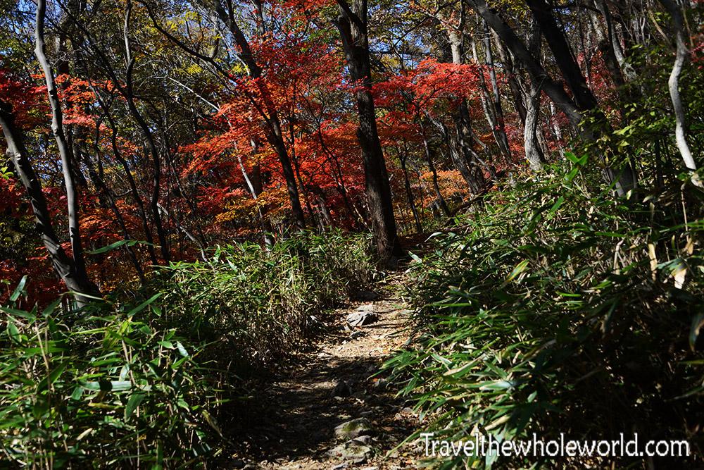 Korea Naejangsan Hiking Trail