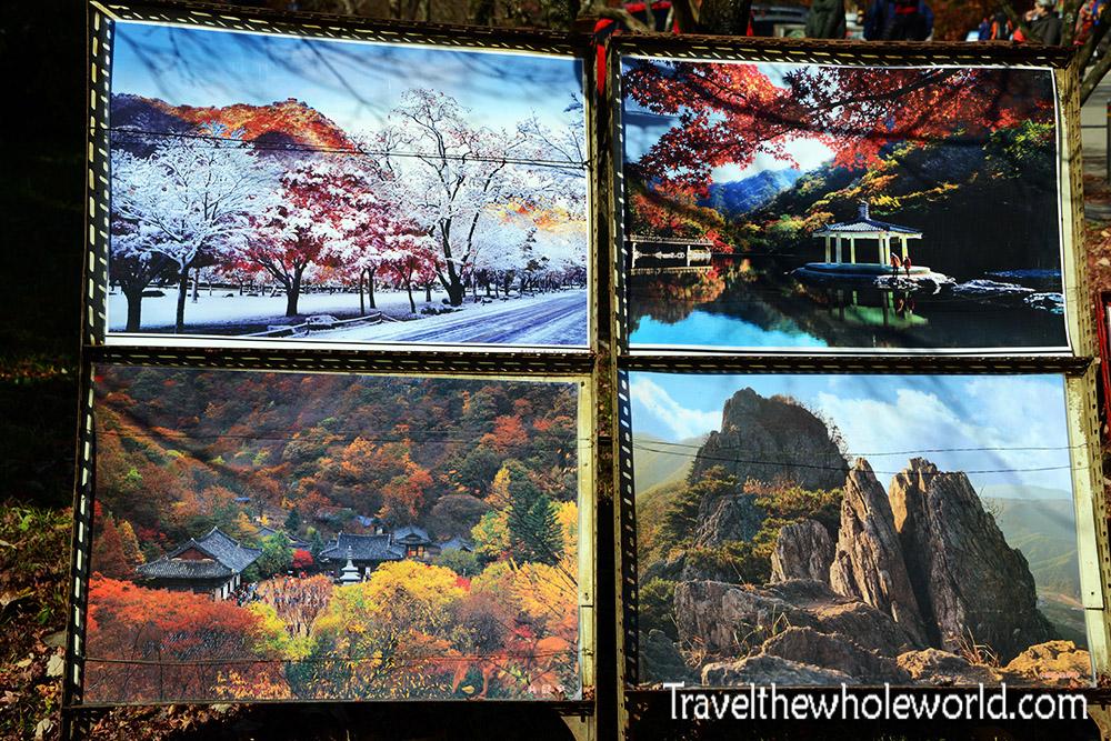 Korea Naejangsan Photos For Sale