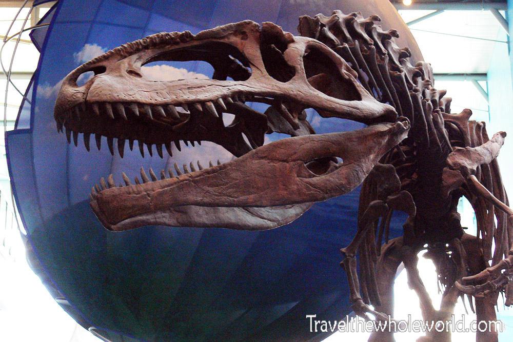 Maryland Baltimore Dinosaur