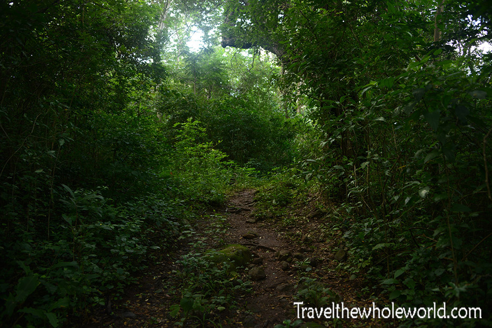 Nicaragua Ometepe Maderas Jungle Trail