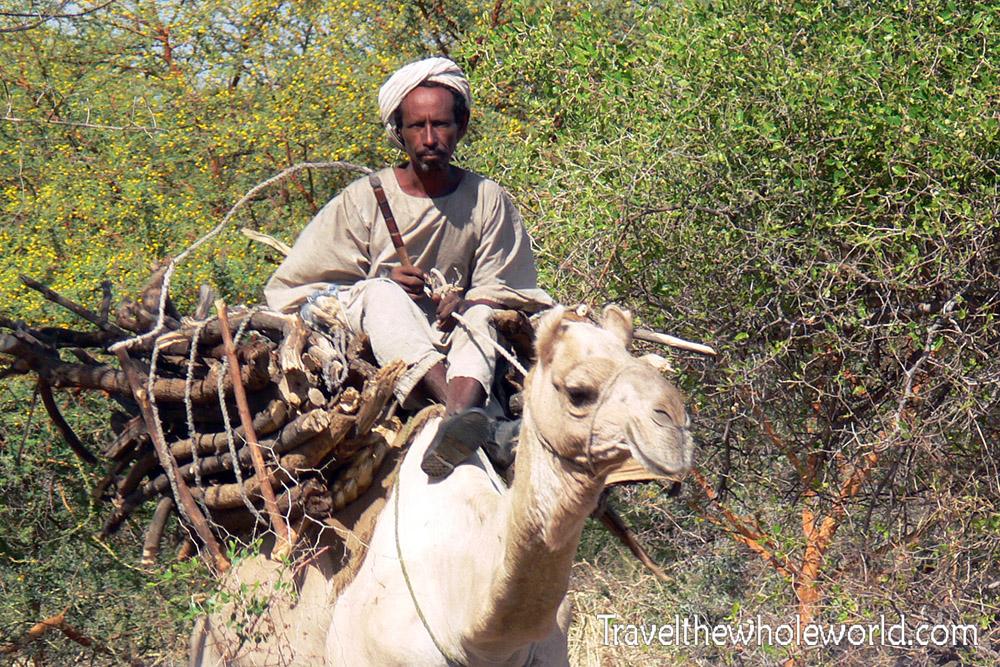 Sudan Camel Ride
