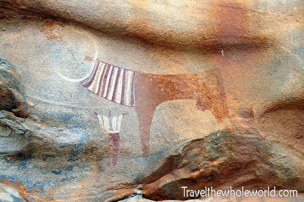 Somaliland Las Geel Ancient Cave Paintings Cow