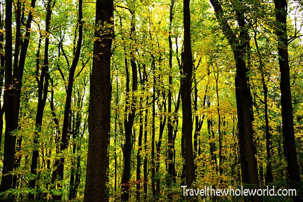 Shenandoah Virginia Fall Colors