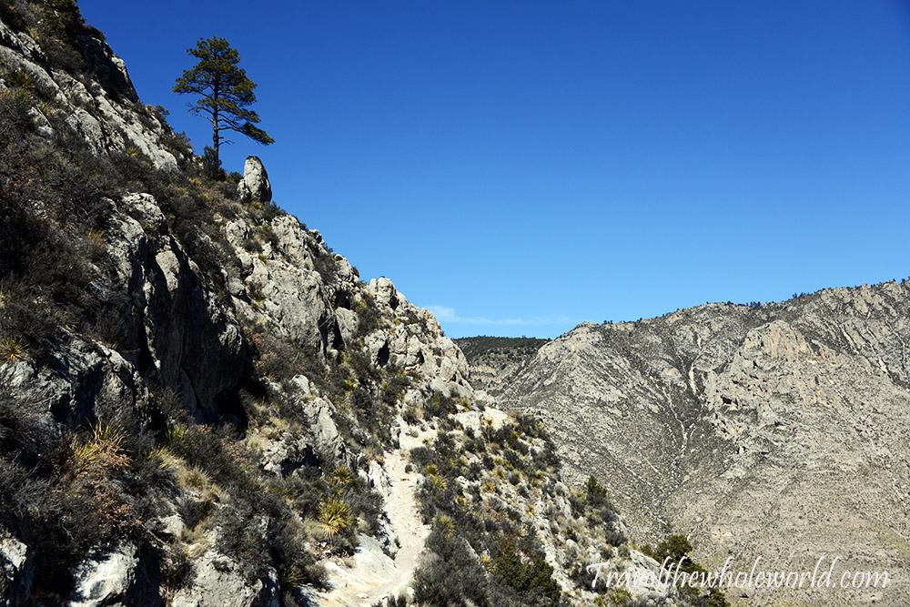 Guadaloupe Peak Trail