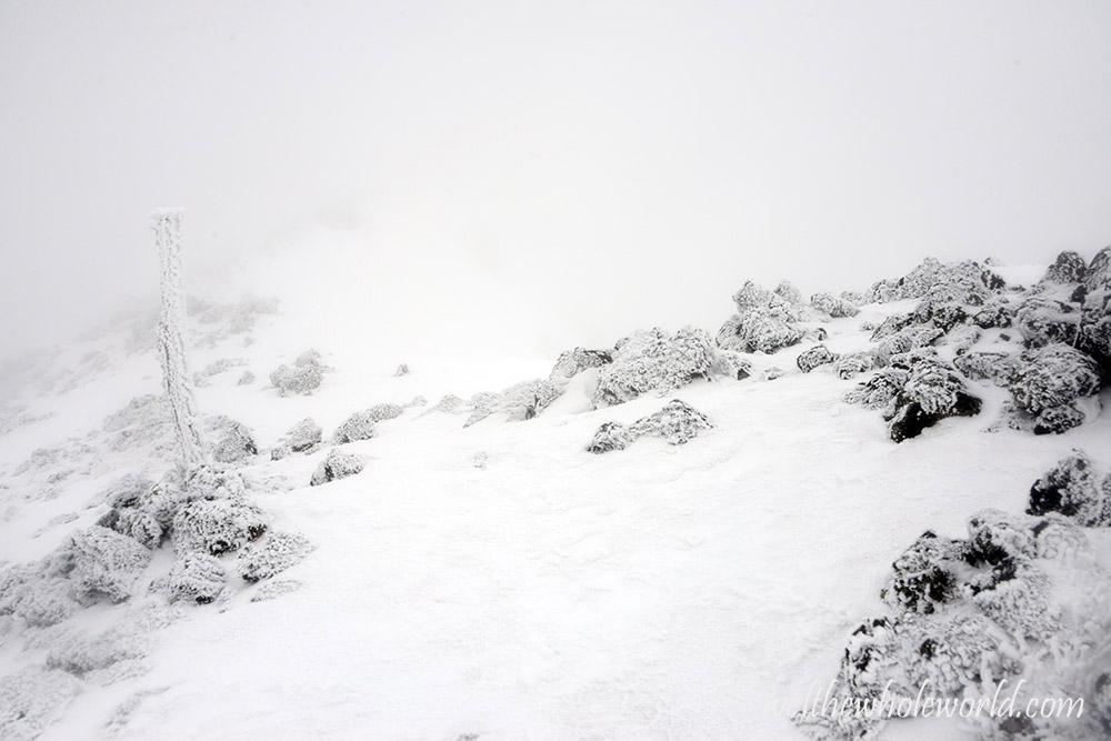 Mt. Humphreys Trail Marker Winter