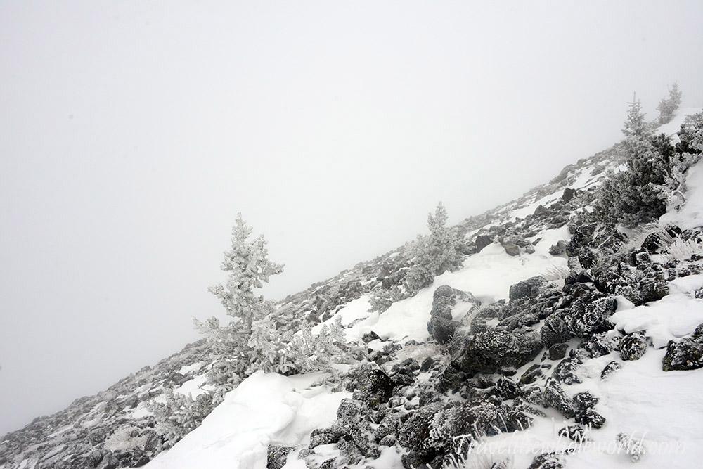 Arizona Mt Humphreys Winter Climb