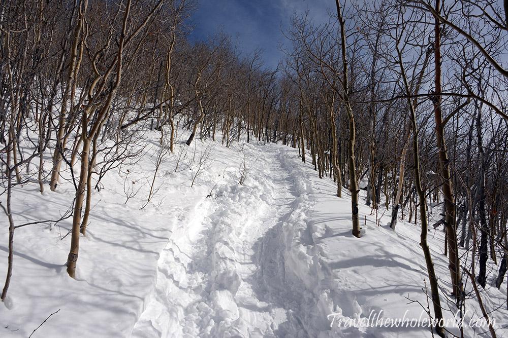 Mt. Elbert Winter Climb Trail