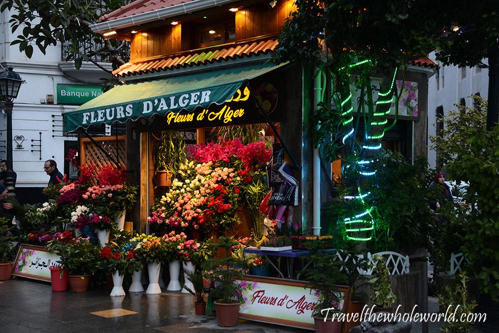 Algeria Flower Shop